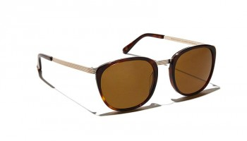 Moscot BRUDE SUN Burnt Tortoise/Gold - Brown